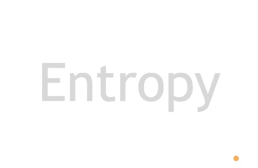 Zero Entropy Networks